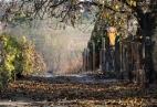 Monori Pincefalu, ősz