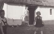 Öreg pince előtt 1953 nyara.