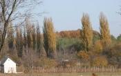 Forrás vidéke